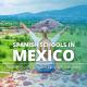 Spanish schools in Mexico Cuáles son las mejores escuelas para tomar cursos de español